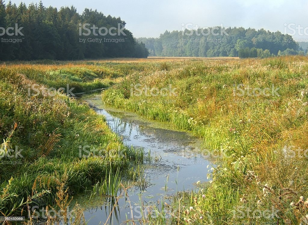 small river in morning landscape royalty-free stock photo