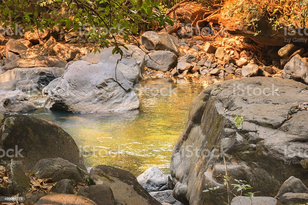 Small river in the tropical jungle of India stock photo