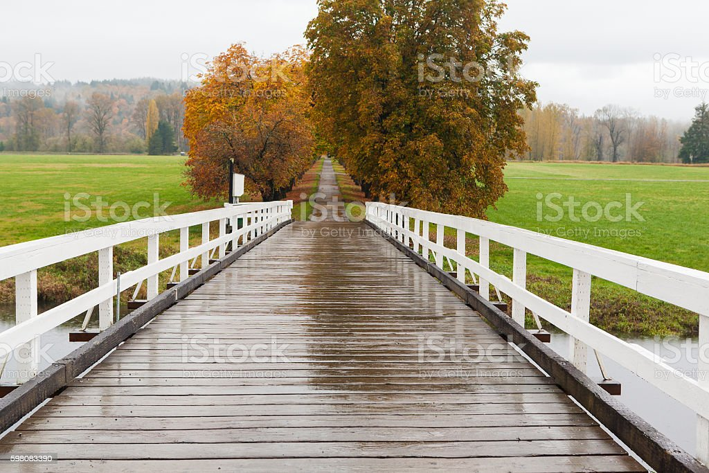 Small road in damp fall season stock photo