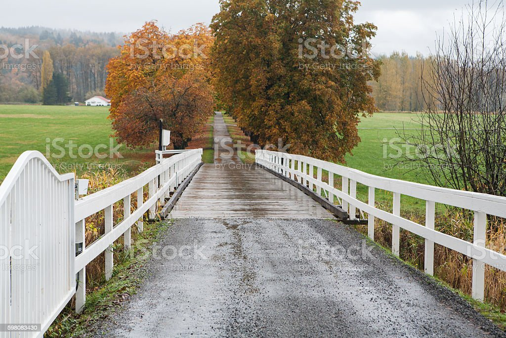 Small road leading to farm with fall colors stock photo