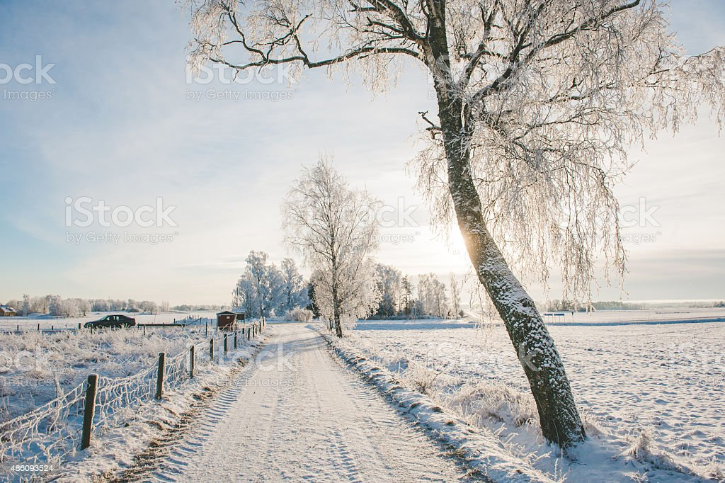 Small road on the side on a cold winter day stock photo