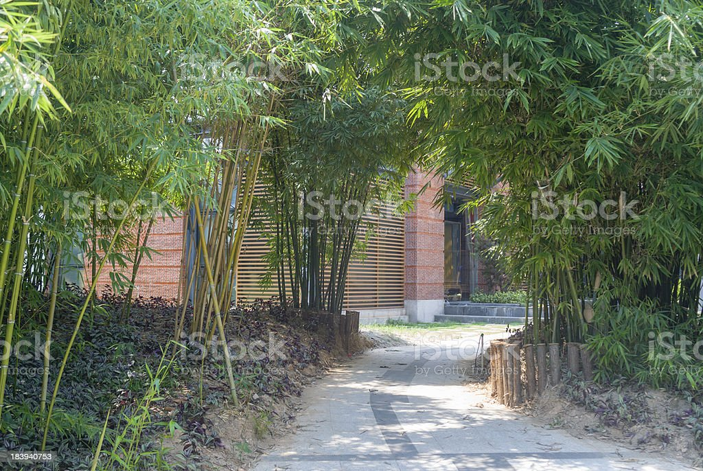 Small road under bamboo shadow royalty-free stock photo