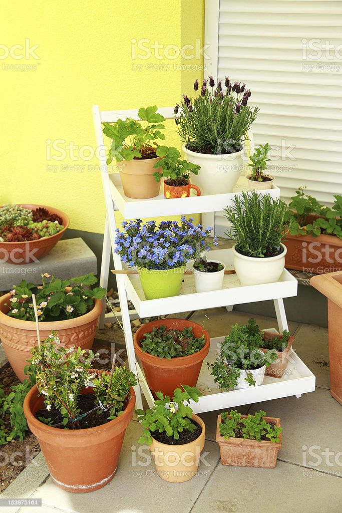 Small roof garden royalty-free stock photo