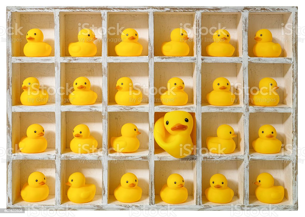 Small rubber ducks in pigeon holes, one extra large duck. stock photo