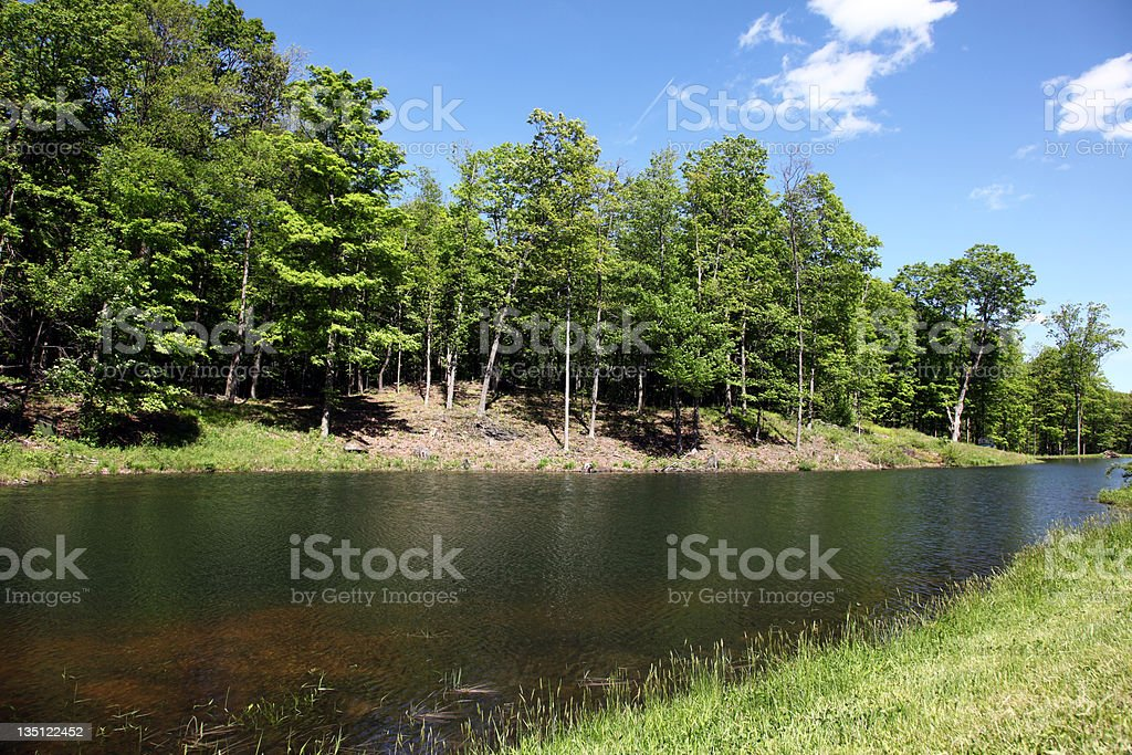 Small Scenic Pond royalty-free stock photo