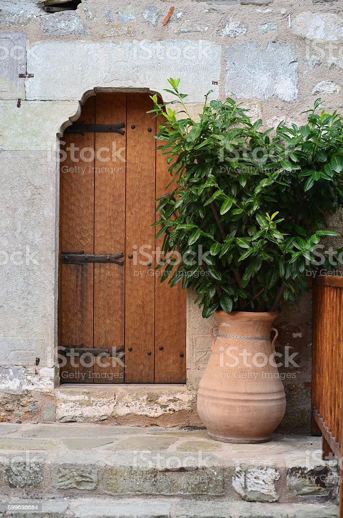 Small shrub in  front of the door. stock photo