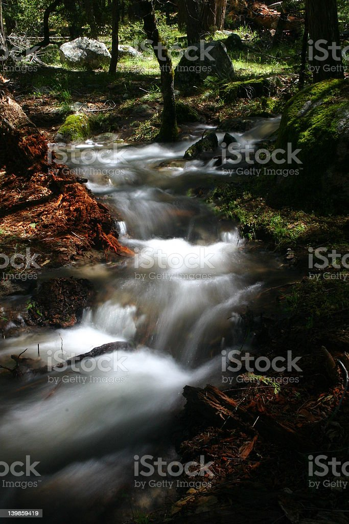 Small Stream in Motion royalty-free stock photo