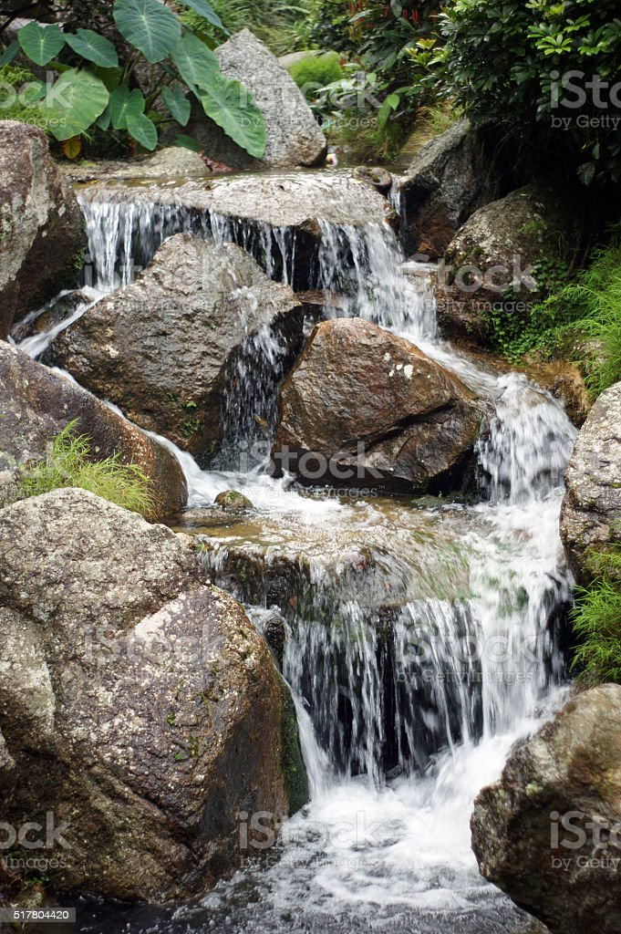 small stream of water with brown stock photo