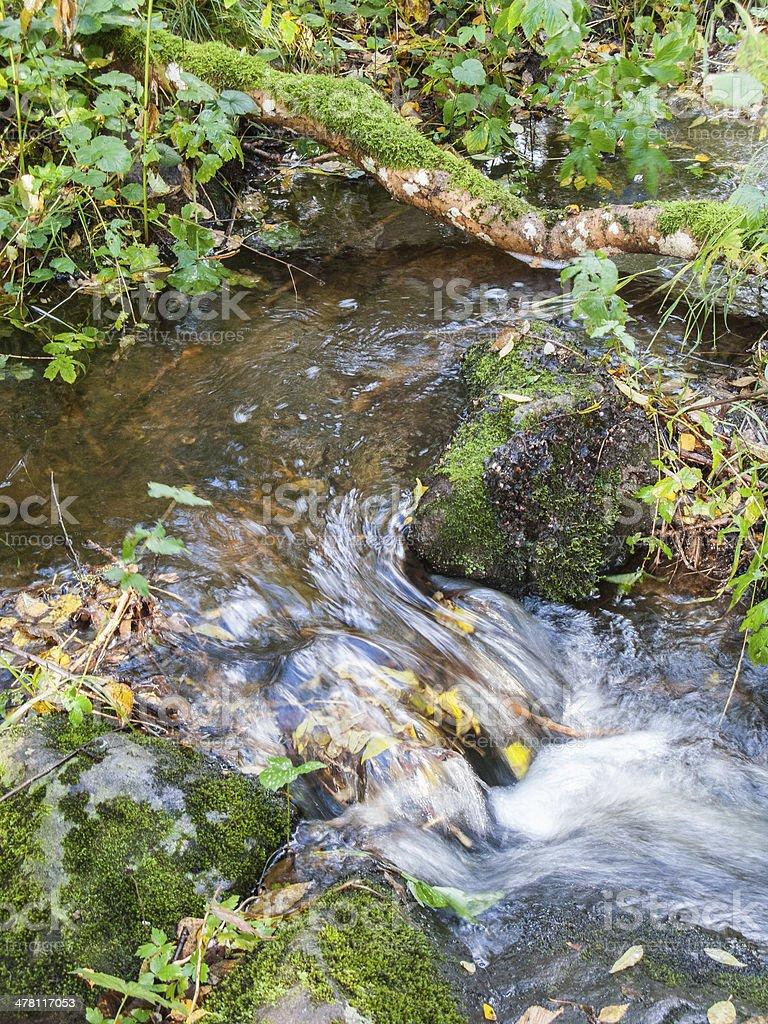 Small stream royalty-free stock photo