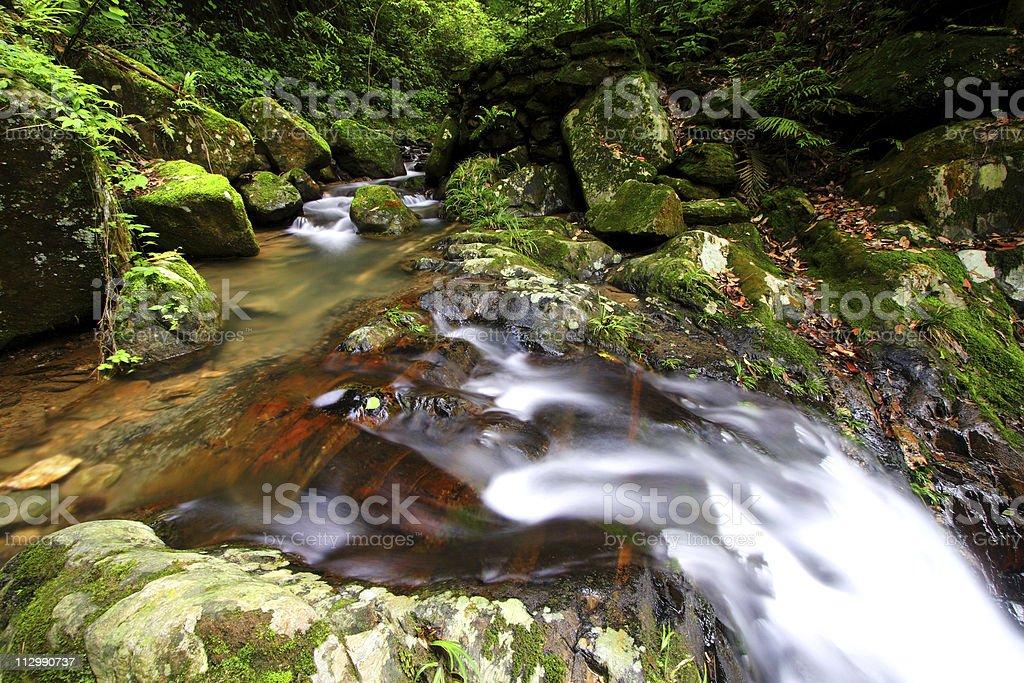 Small streams royalty-free stock photo