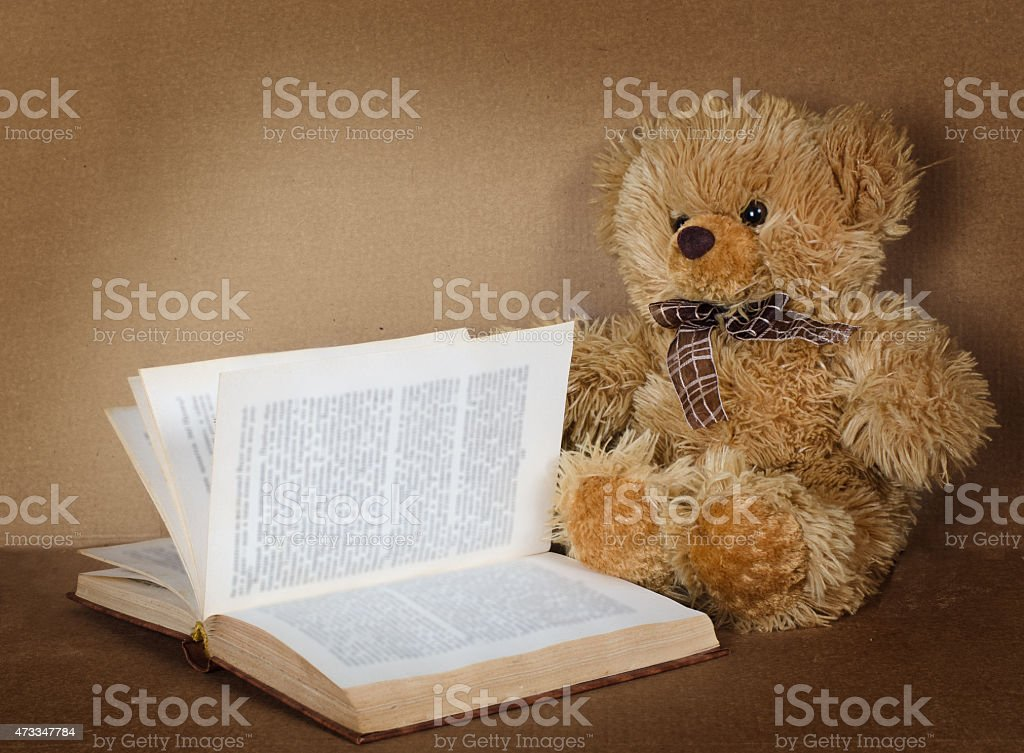 small teddy bear with the book stock photo