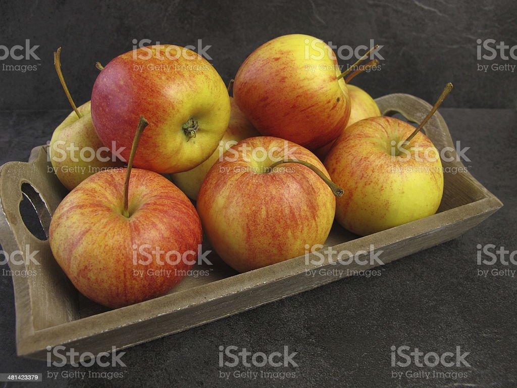 Small Tenroy Gala Royal apples stock photo