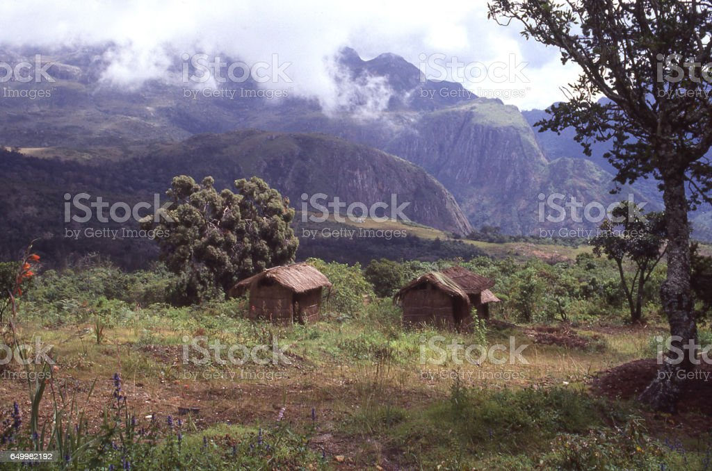 Small thatch huts in clearing of Mulanje Mountain Forest Reserve in southern Malawi Africa stock photo