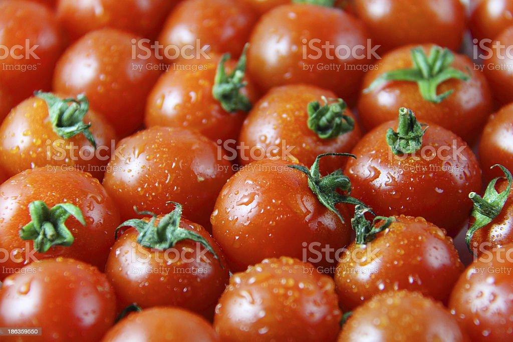 Small tomato of large amounts royalty-free stock photo