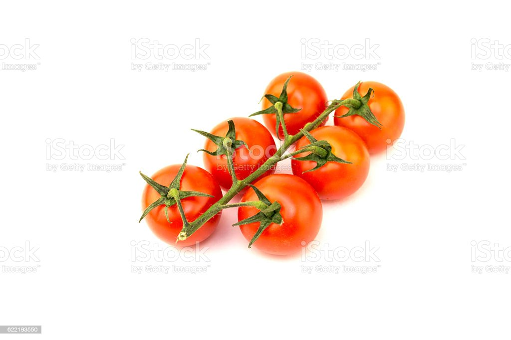 Small tomatoes with green branch royalty-free stock photo