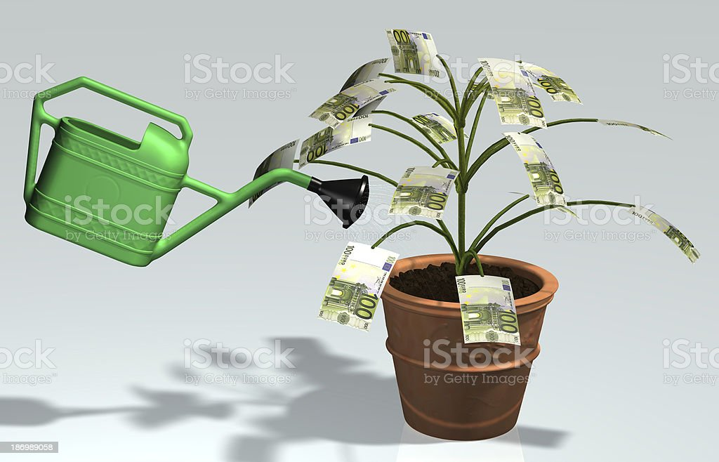 small tree with 100 euro banknotes watered in a vase royalty-free stock photo