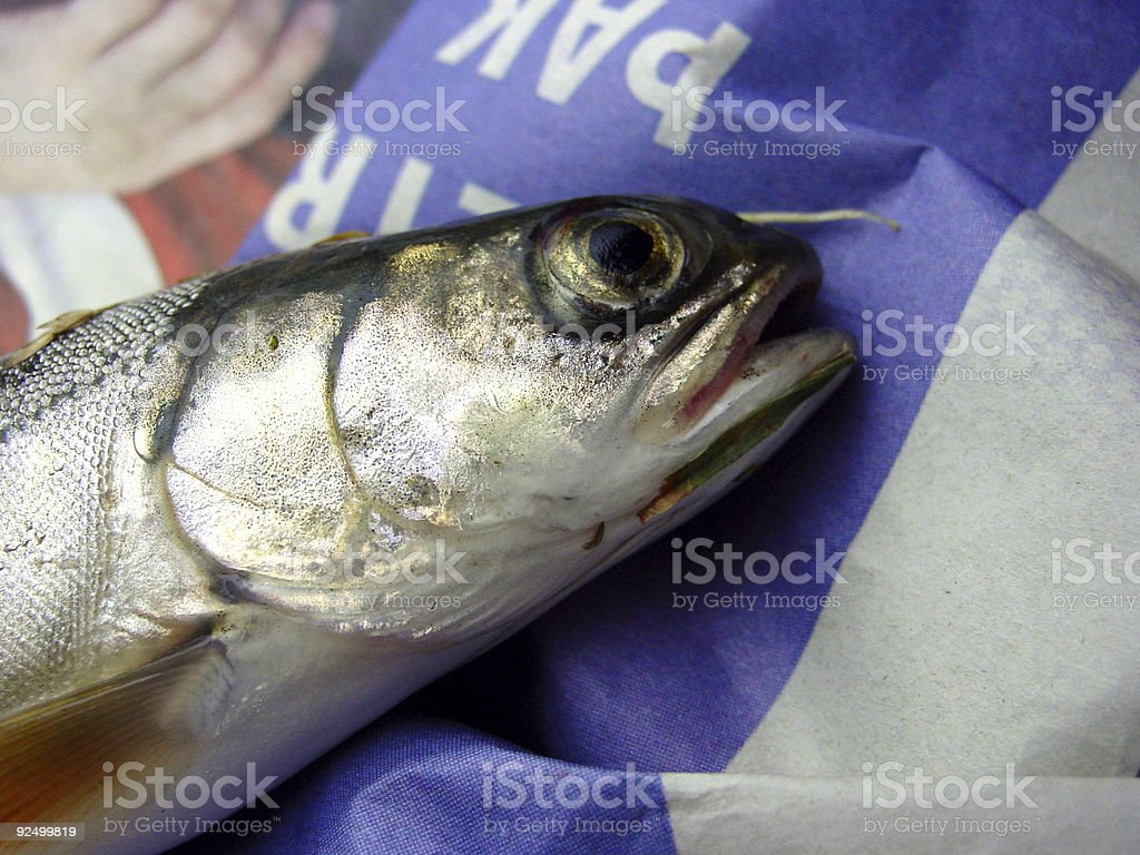 Small trout on a newspaper stock photo