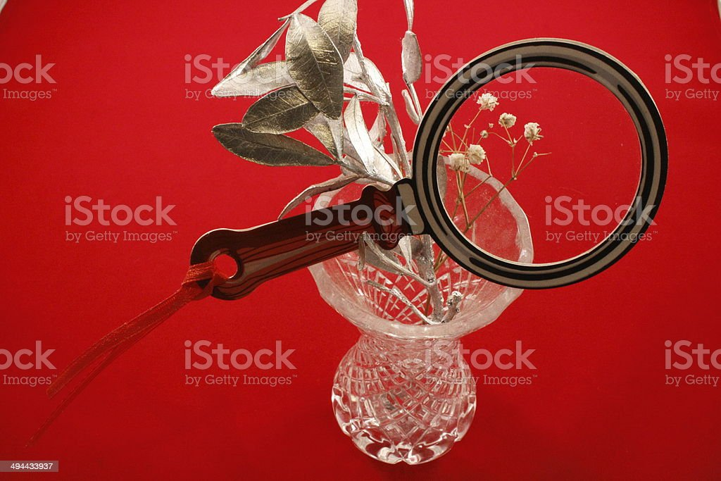 Small vase with a silver twig with a magnifying glass stock photo