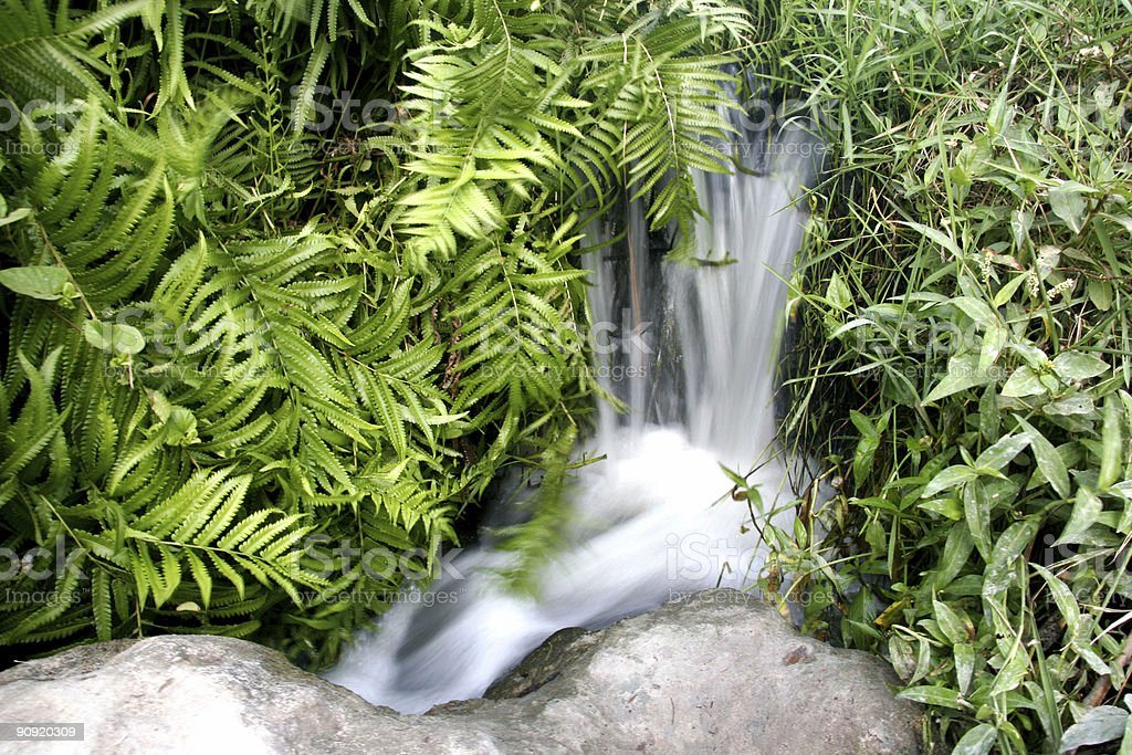 small waterfall in grass stock photo