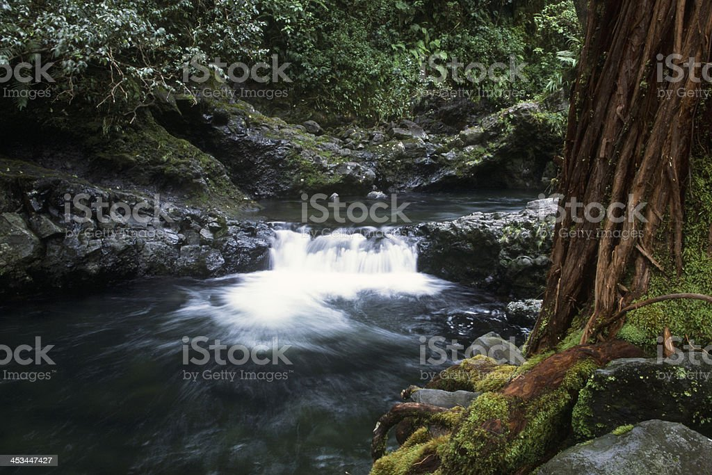 Small Waterfall on Maui royalty-free stock photo