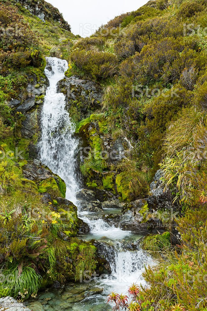 small waterfall on Routeburn Track stock photo