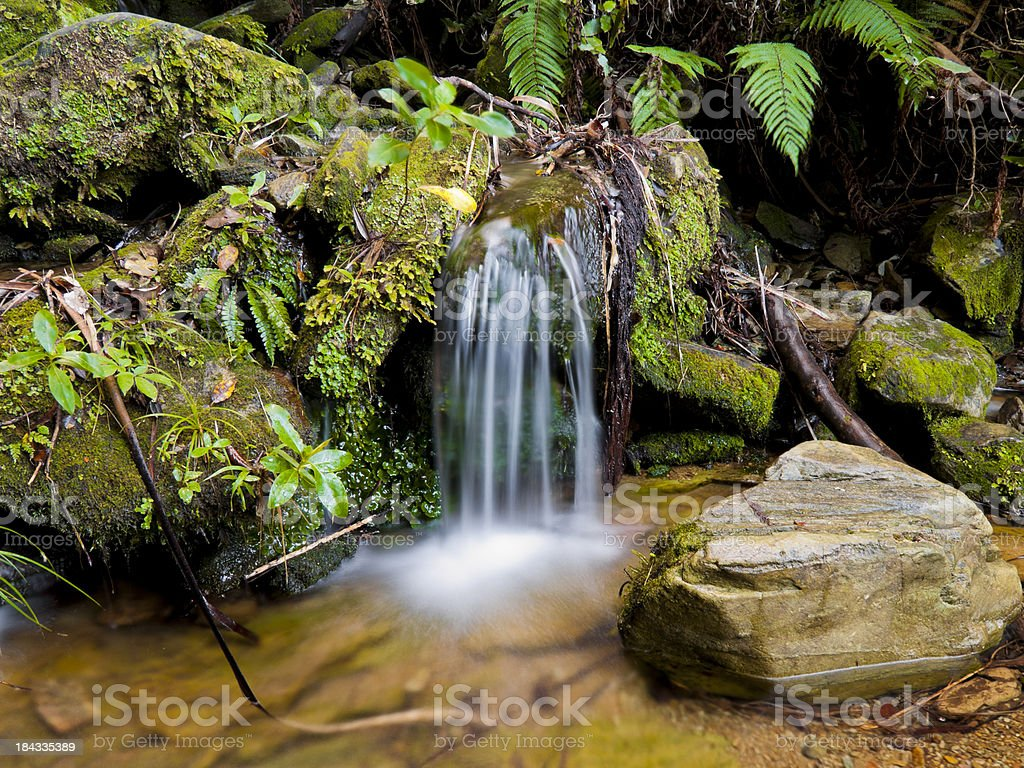 Small waterfall, Queen Charlotte Track, New Zealand royalty-free stock photo