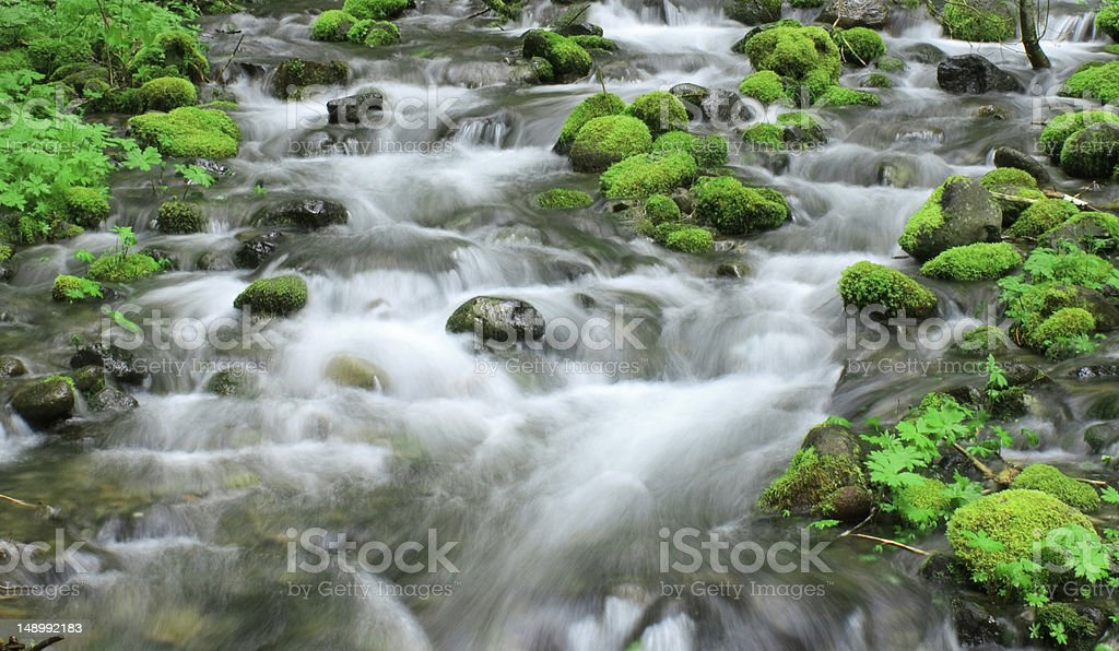 Small waterfall through moss-covered stones stock photo