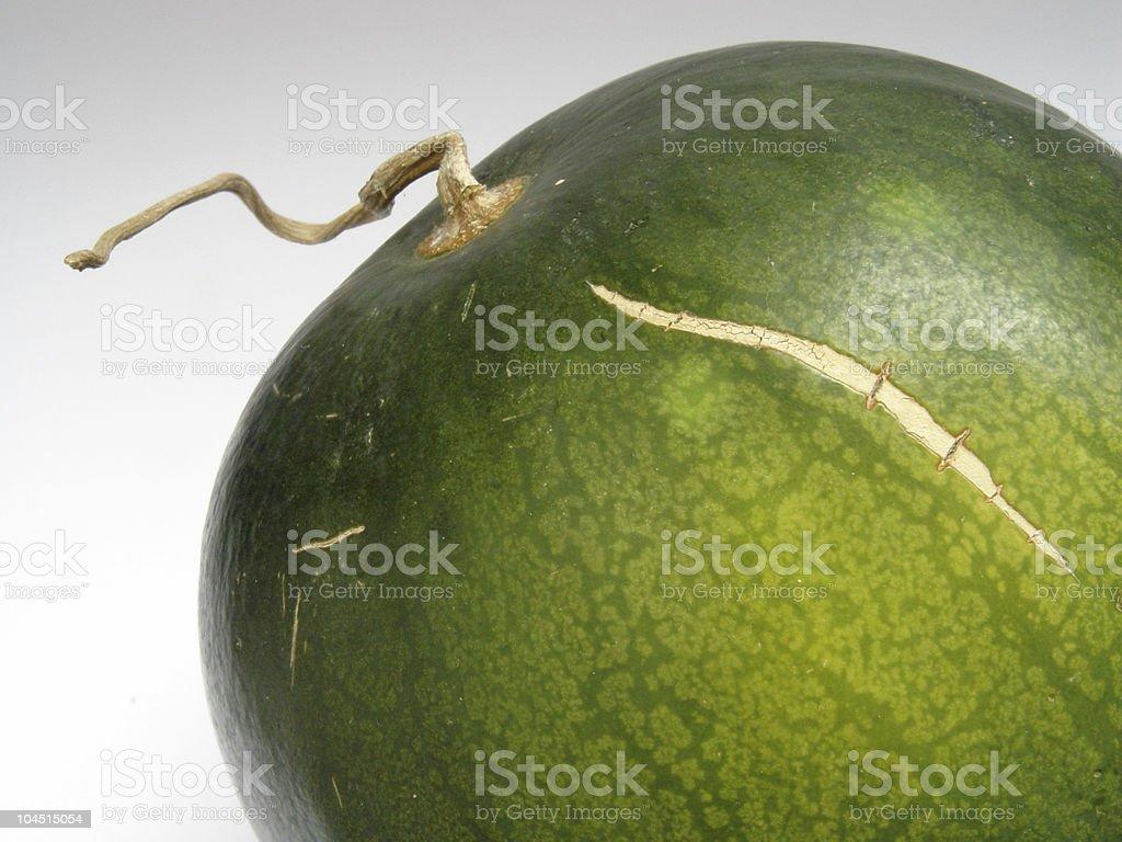 Small watermelon royalty-free stock photo