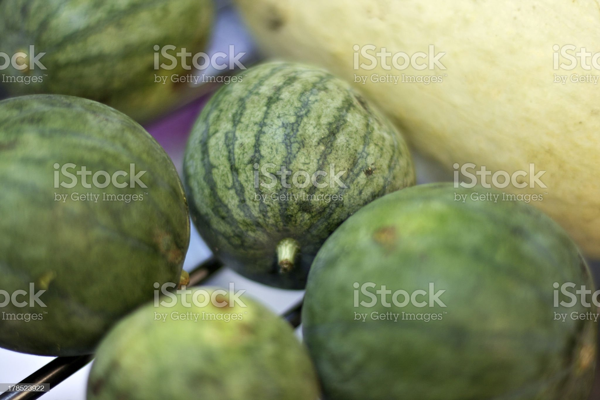 Small watermelons and a squash royalty-free stock photo