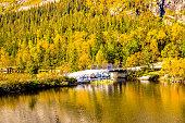 small white bridge over a fjord in autumn