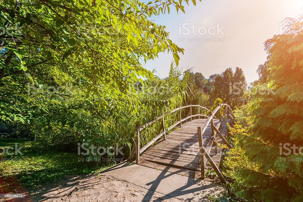 Small wooden bridge surrounded by nature stock photo