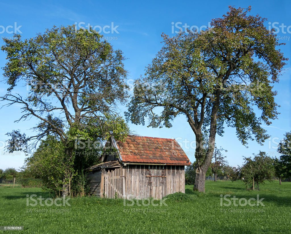 Small wooden shack under fruit trees royalty-free stock photo