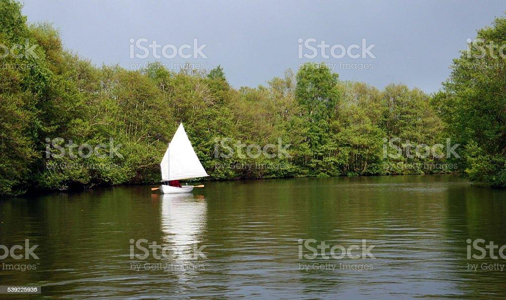 Small yacht on Norfold Broads stock photo