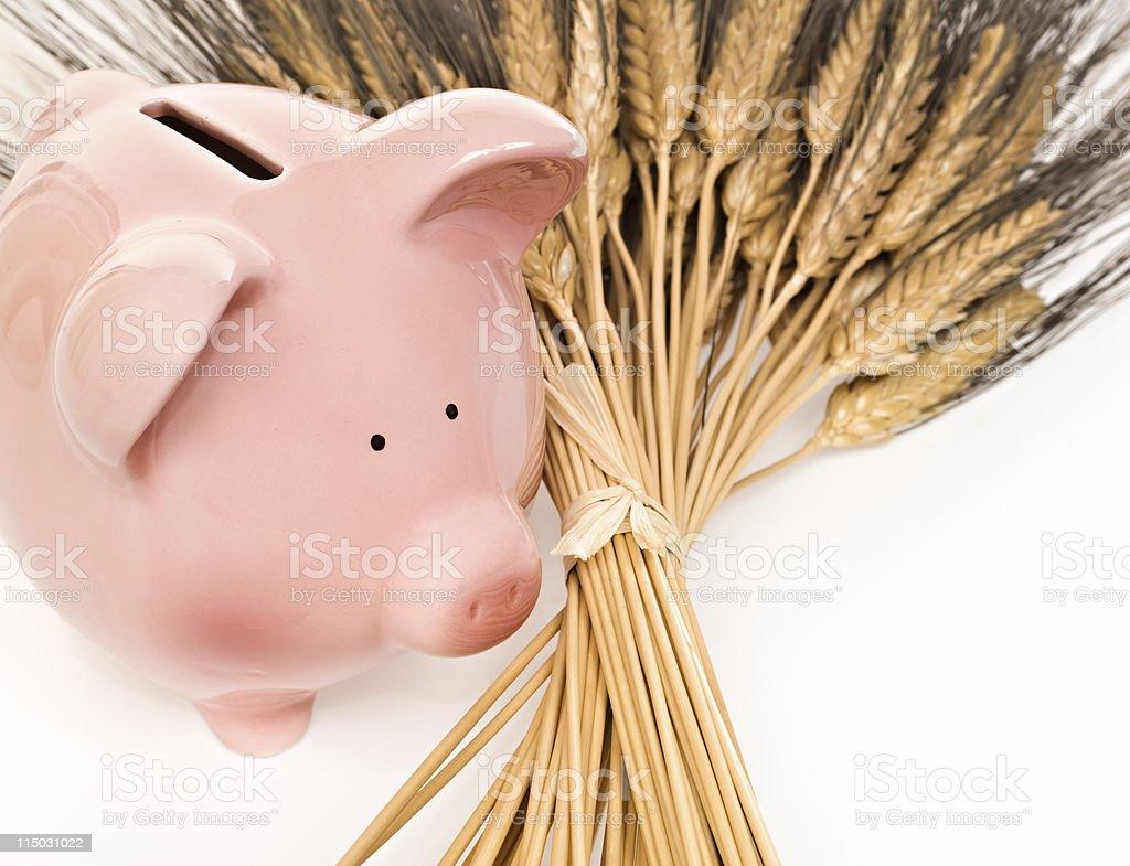 Smart Savings royalty-free stock photo