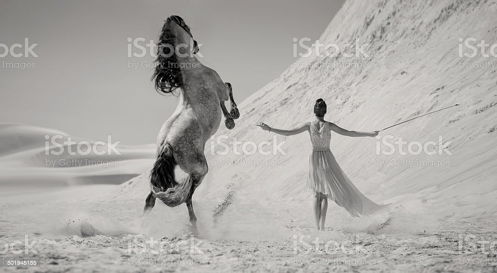 Smart woman with the majestic horse stock photo