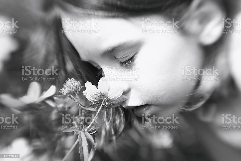 Smell II royalty-free stock photo