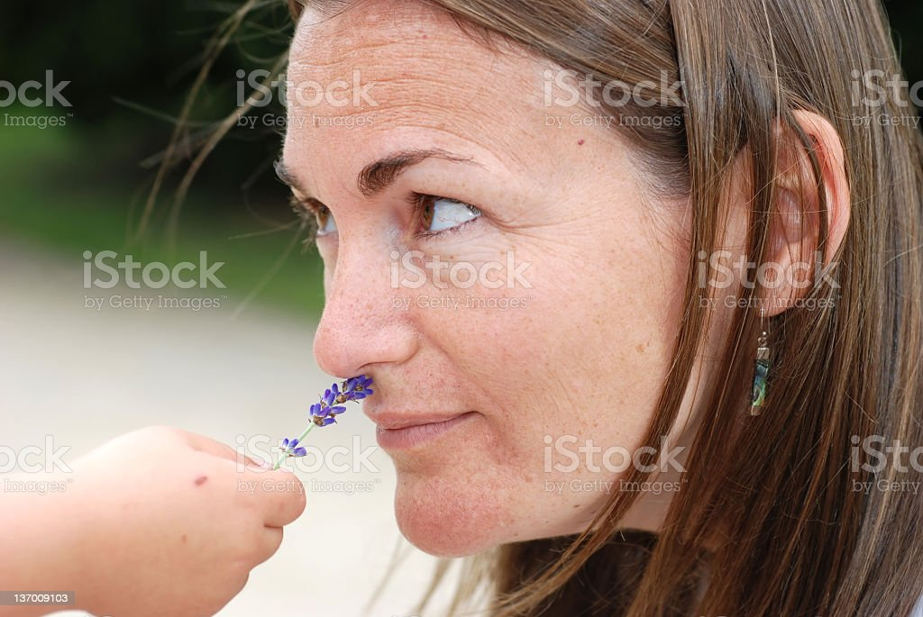 smell the flower royalty-free stock photo
