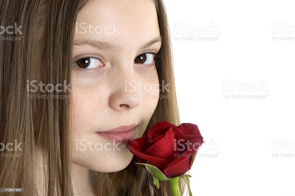 Smell the Roses 2 royalty-free stock photo