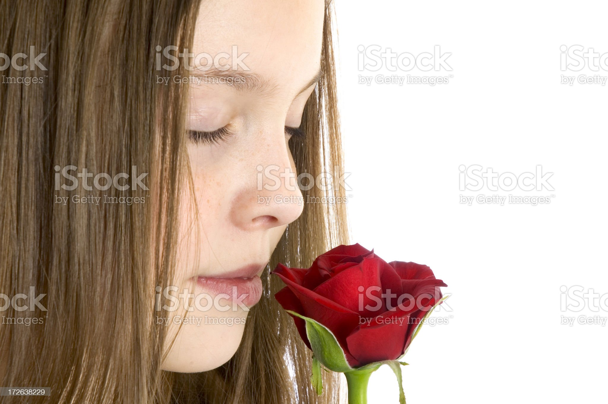 Smell the Roses royalty-free stock photo