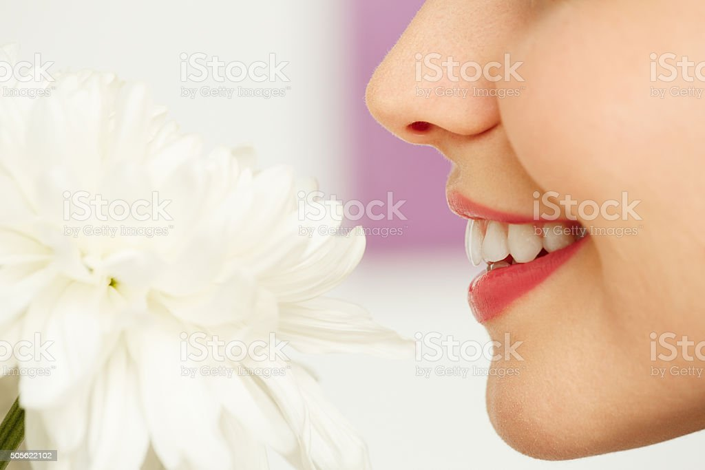 Smelling flower stock photo