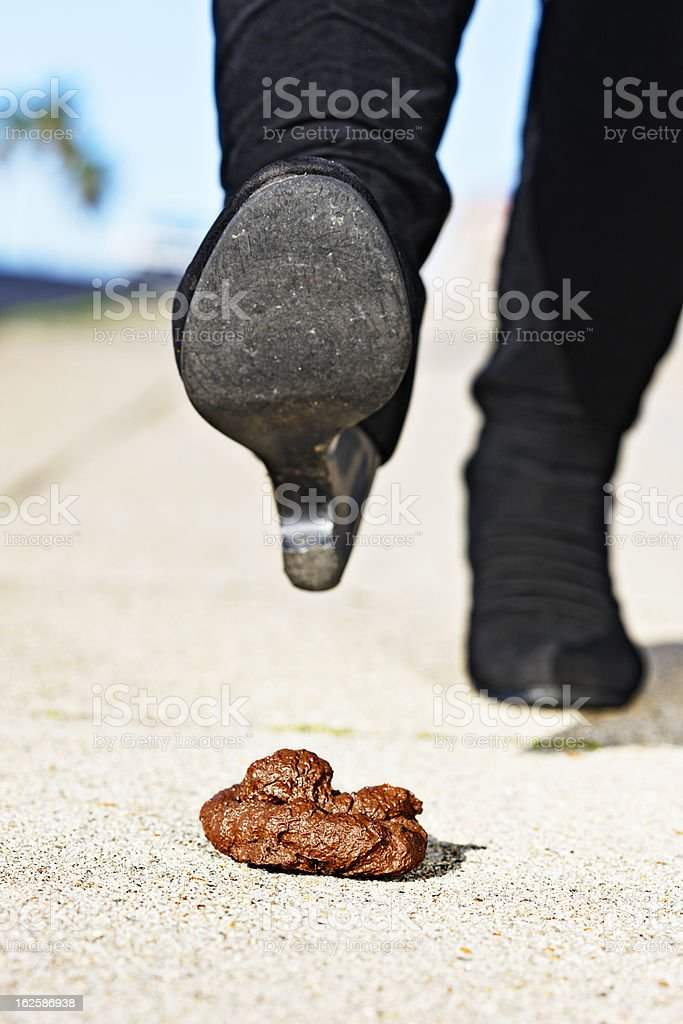 Smelly surprise on the sidewalk: dog poop alert! royalty-free stock photo