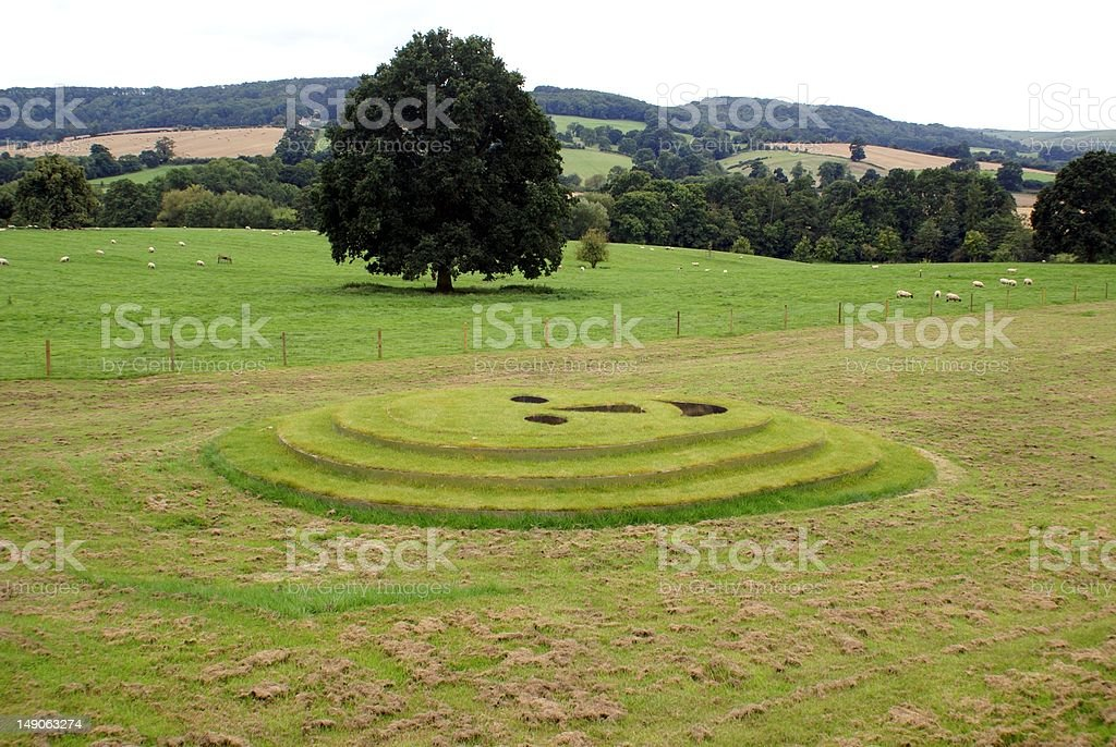 Smiley face in field royalty-free stock photo