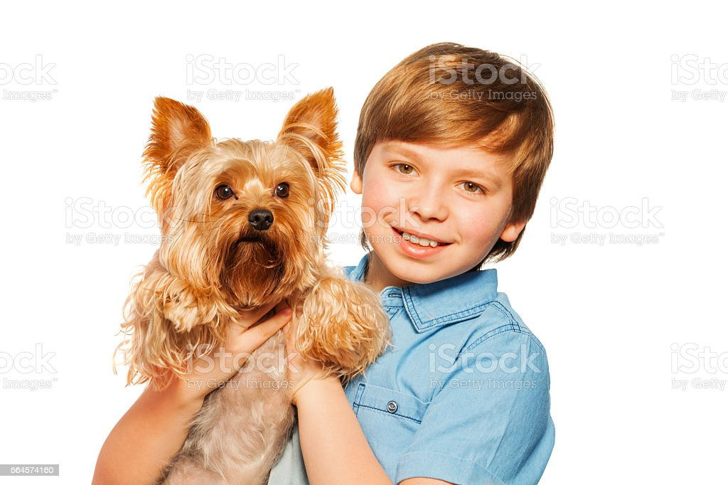 Smiling boy holding Yorkshire terrier stock photo