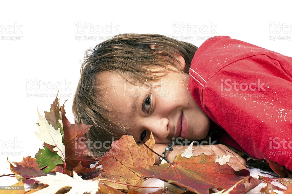 Smiling boy in the autumn leaves. royalty-free stock photo