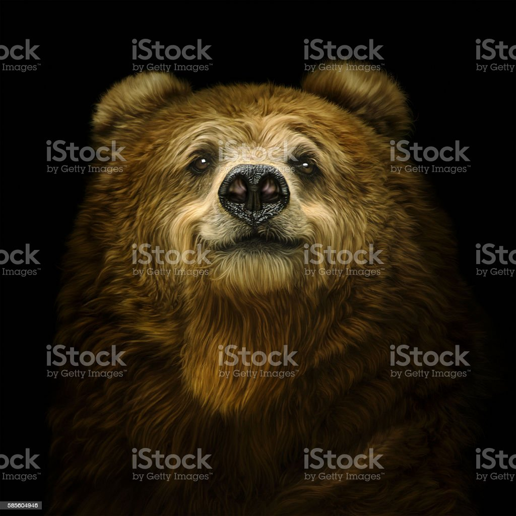 Smiling brown bear stock photo