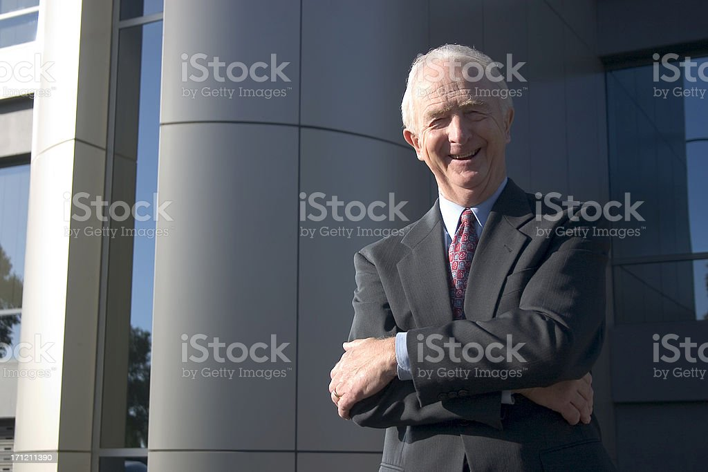 Smiling Businessman royalty-free stock photo