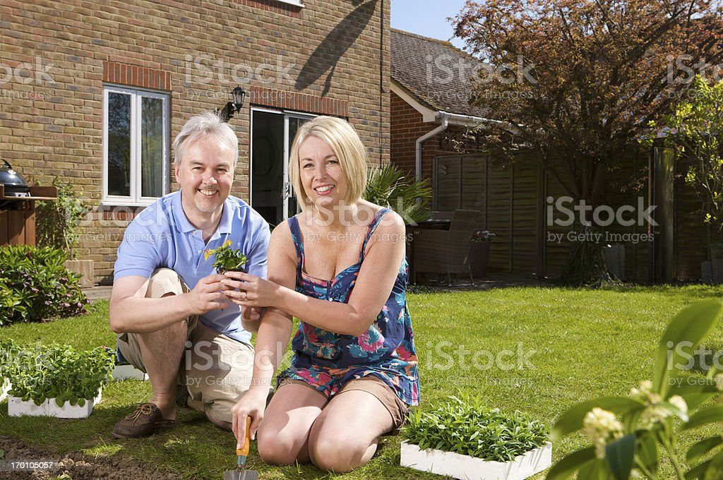 Smiling couple at home planting bedding plants in their garden royalty-free stock photo