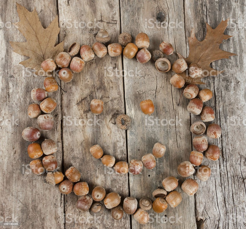 Smiling face of acorns on a wooden background royalty-free stock photo