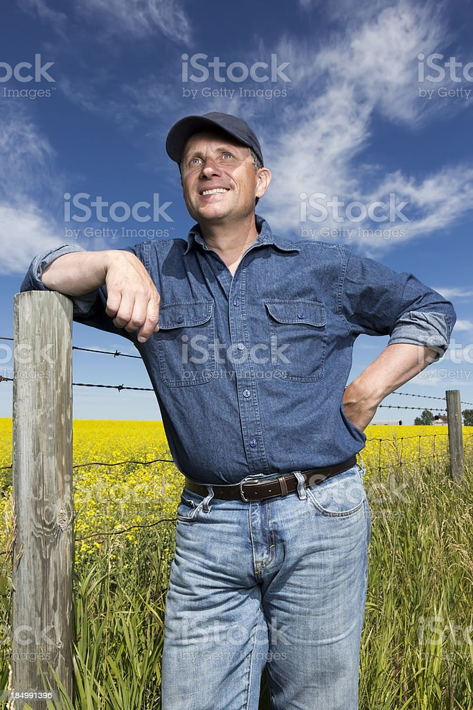 Smiling Farmer and Canola royalty-free stock photo