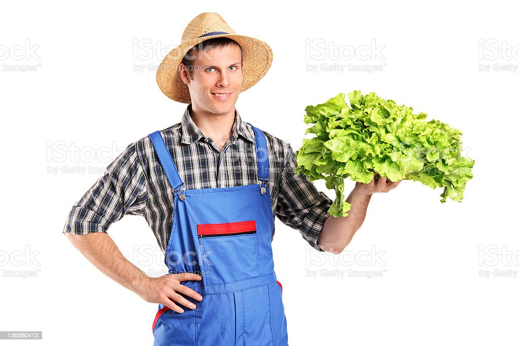 Smiling farmer holding a lettuce in his hand royalty-free stock photo